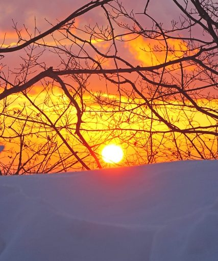 石からのメッセージ ~陽はまた昇る~