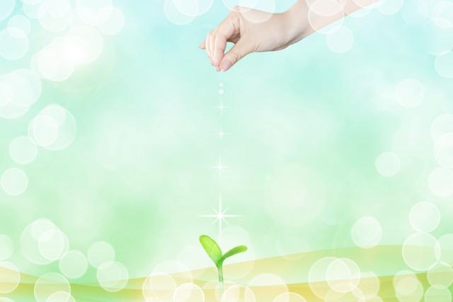 12月21日 石からのメッセージ~幸せの種を蒔いていこう~
